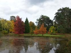 Arboretum d'Ingrannes