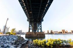 Under the Bridge II. Brooklyn, USA 2015