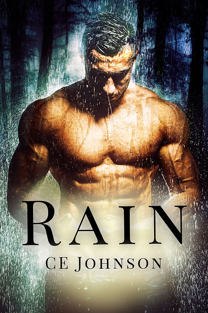 romantic suspense book with an alpha male