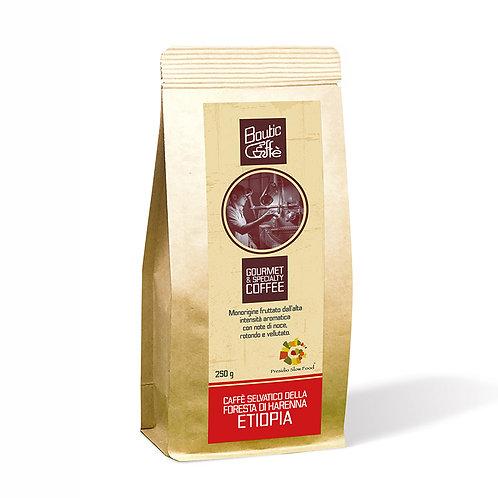 Café Slow Food Etiopia