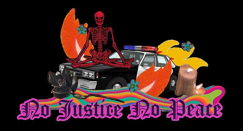 No Justice NO PEACE Fuck the Police