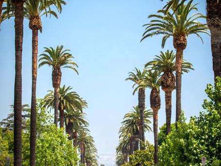 最もロサンゼルスらしいロケーションは・・?