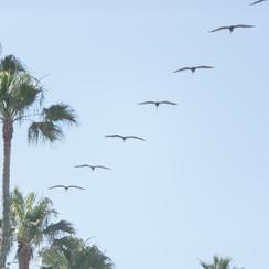 San Clemente 5.24 (22).jpg