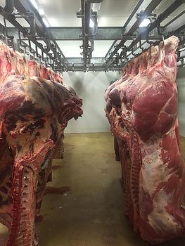 vleeshandel ameloot kwaliteit