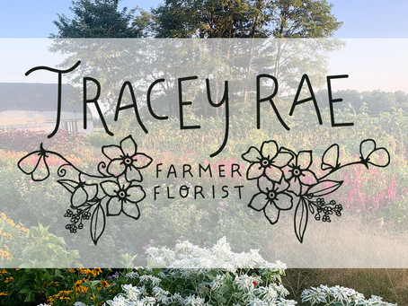 Upcoming events at the Farm!
