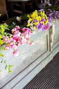 Spring+Summer Flower Share (14 Weeks)