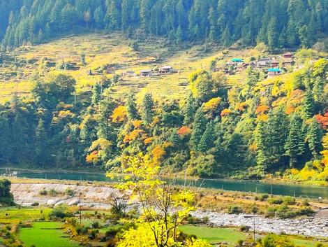 Himachal Parades Road Trip.