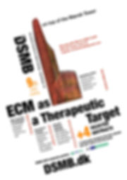 DSMB 2020 flyer.jpg