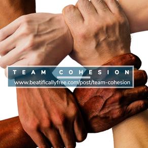 Team Cohesion