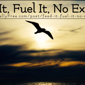 Feed It, Fuel It, No More Excuses
