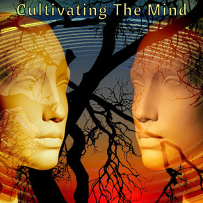 Cultivating The Mind