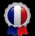 Icône innovation française