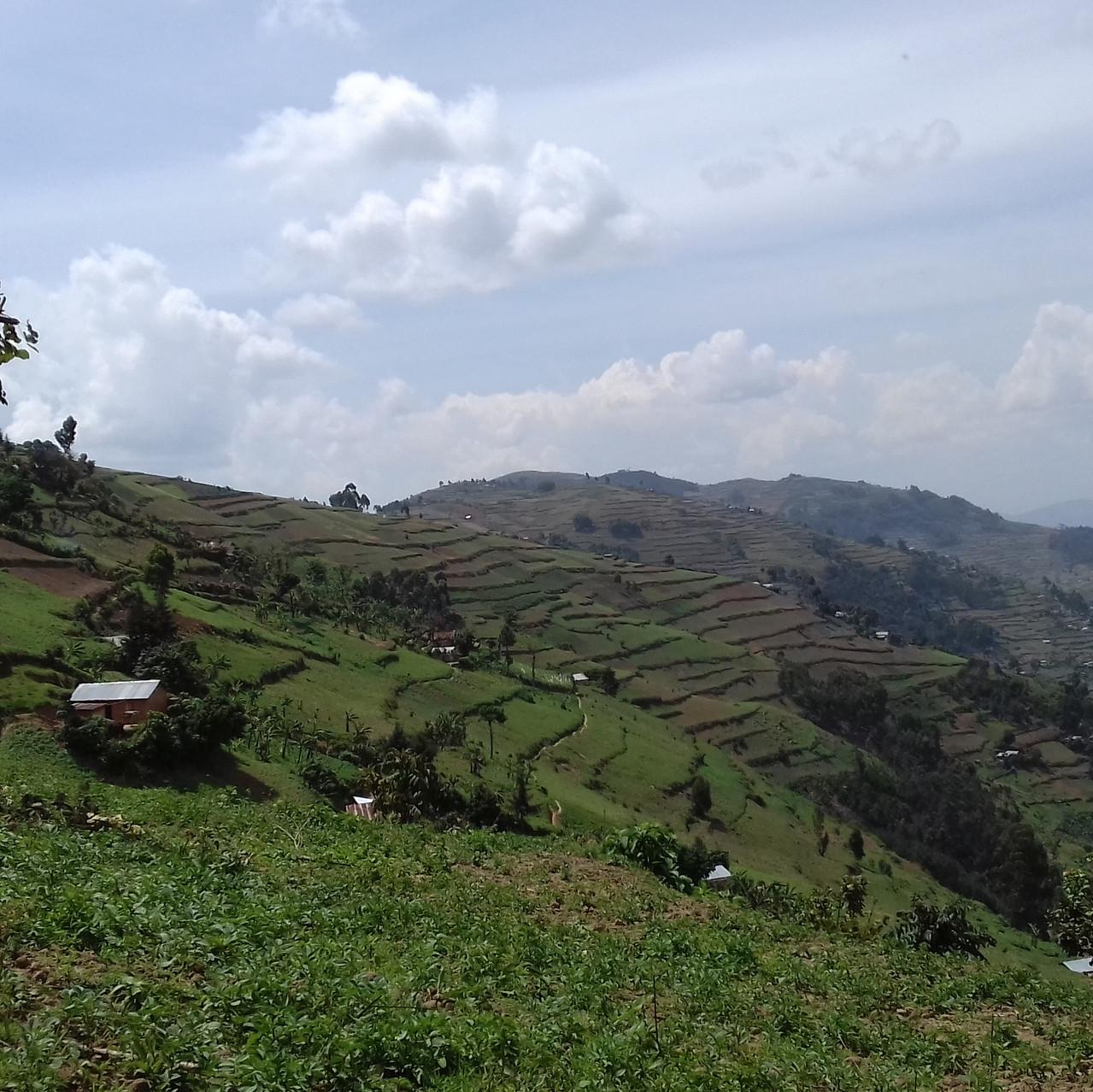 De l'autre coté, le Rwanda