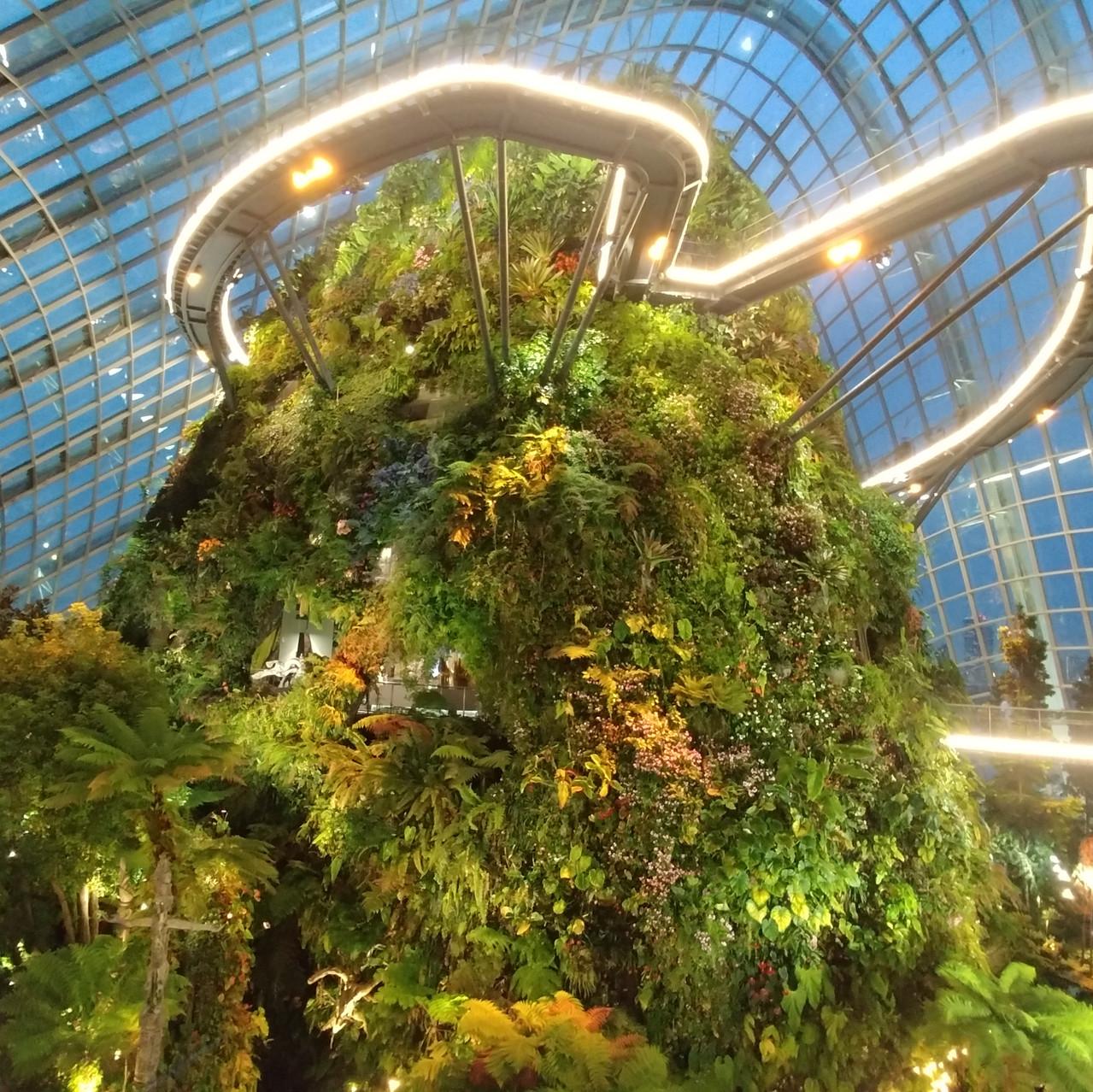 Jardin botanique futuriste
