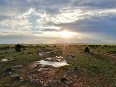 Safari en terre Maasaï