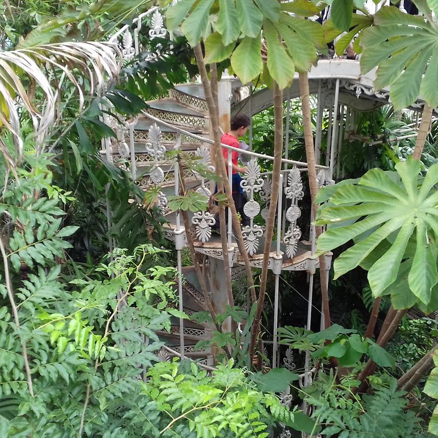 Lost in Kew Gardens