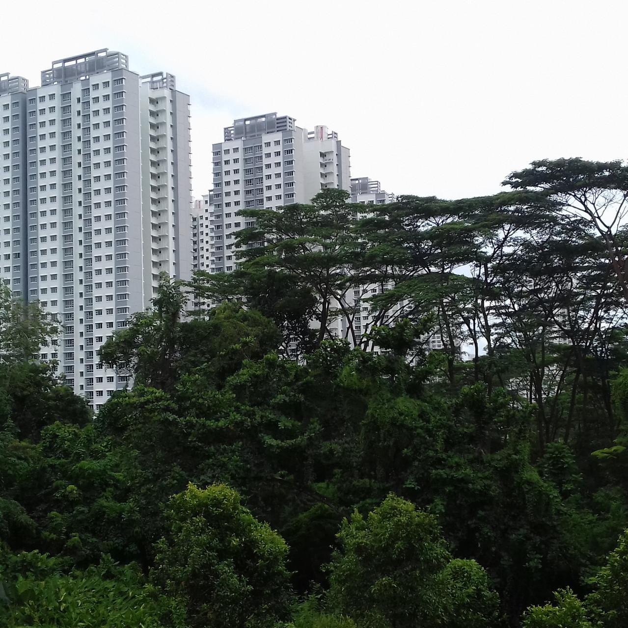 Buildings et espaces verts