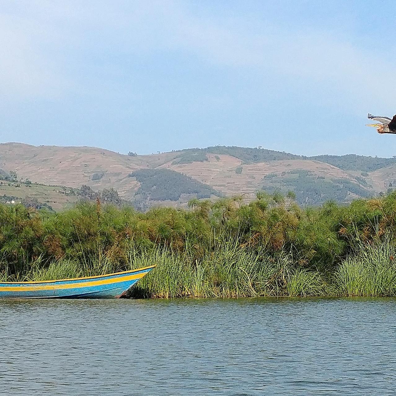Lac Bunyonyi