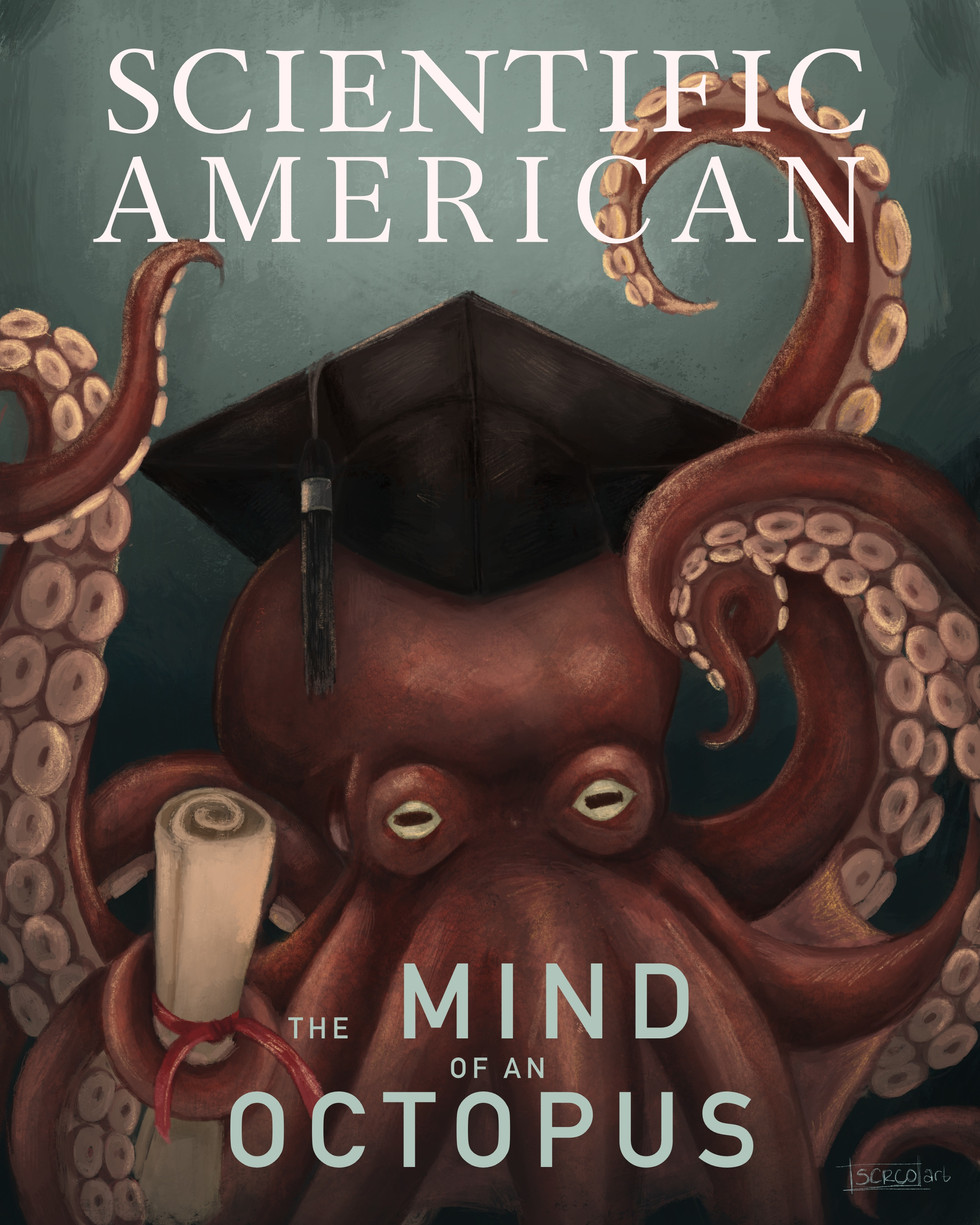 Scientific American Cover - The Mind of an Octopus