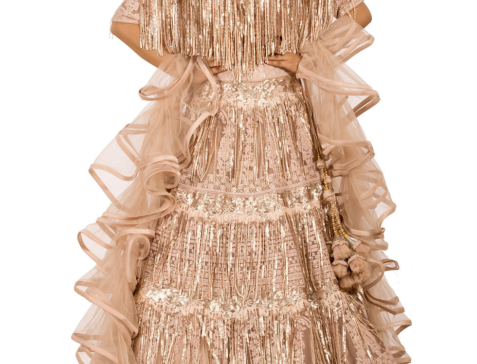 Dusty Peach Designer Party Wear Dress with Ruffle Stole (Style Code: 2361800)
