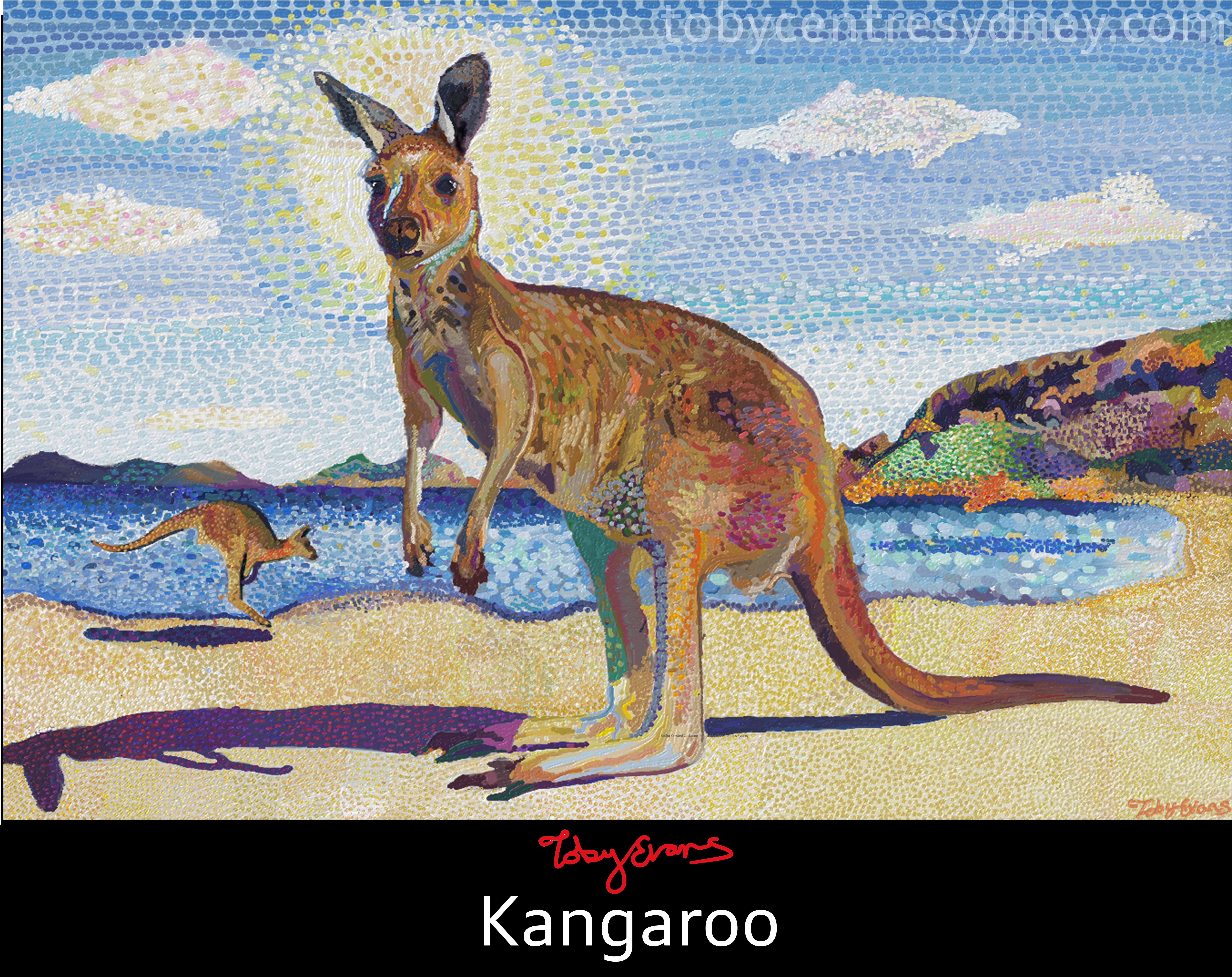 Kangaroo 2017