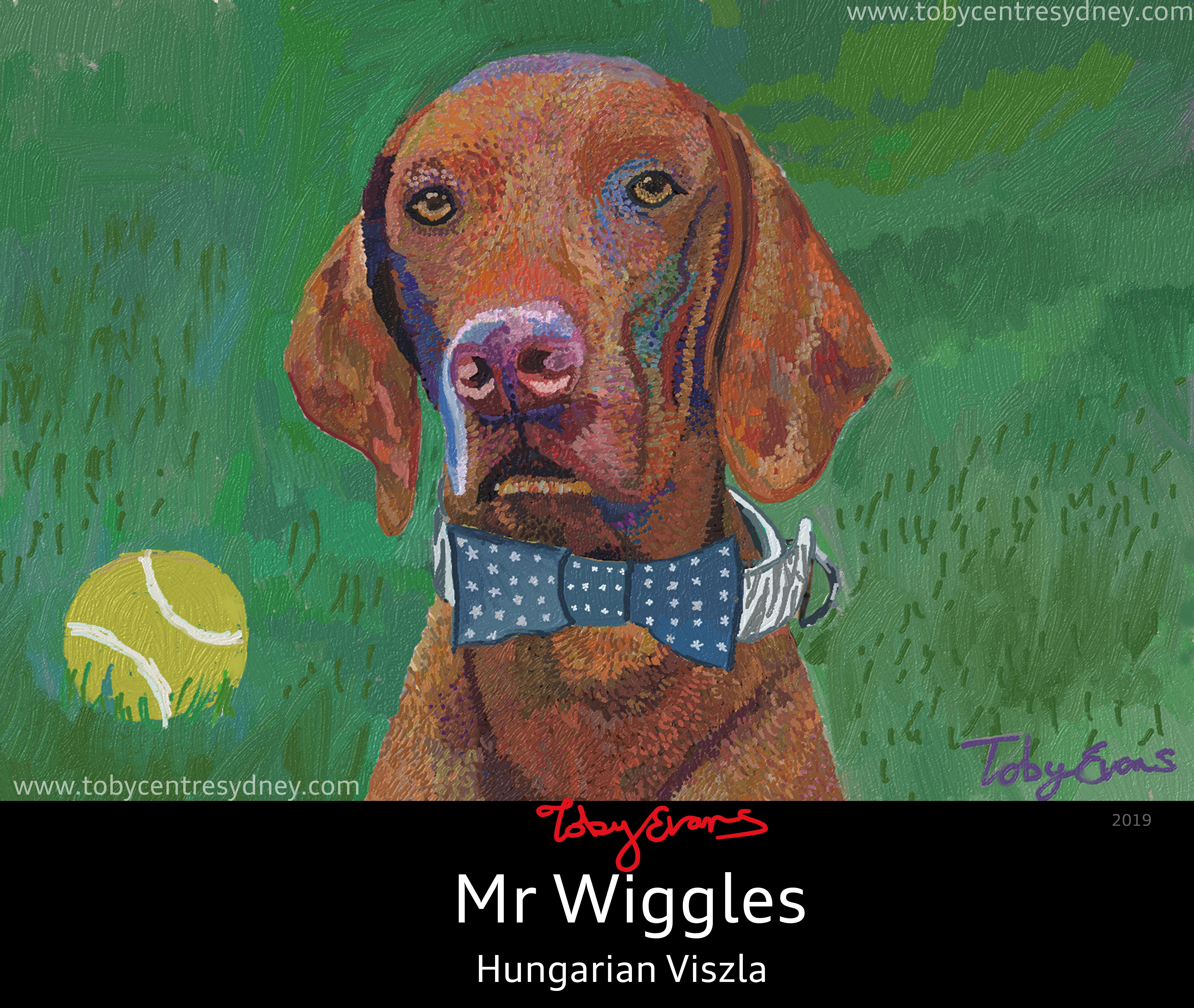 Sherlock - Mr Wiggles