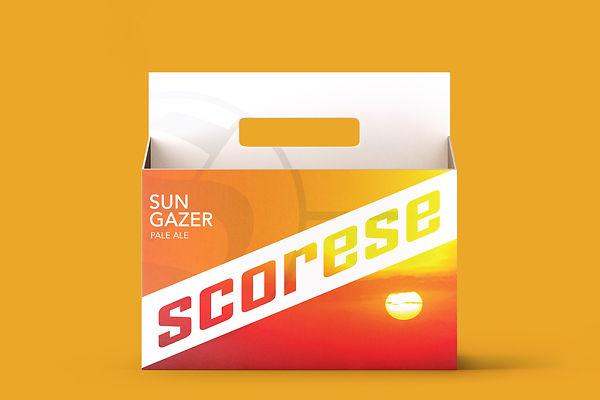 SUN CASE.jpg