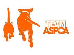 Team-ASPCA-default-image-icons_0_0.jpg