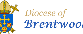 Latest news on Renewal and Restructuring from Brentwood diocese received under the Steward of the Go