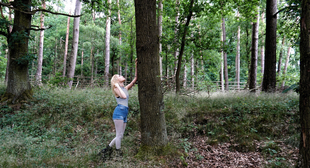 Forest June 2018 - Marina Kristensen