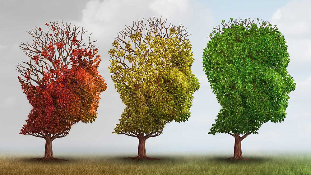 Alzheimer Tree