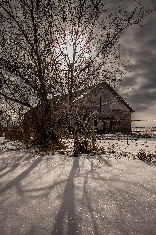 Abandoned barn on the prairies amid the shadows