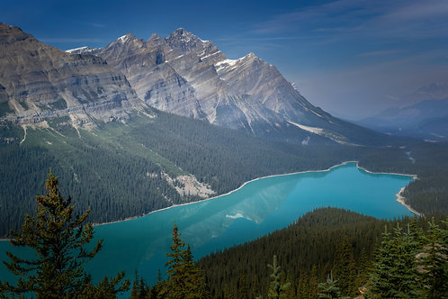 Turqoise blue of Peyto Lake in Banff National Park