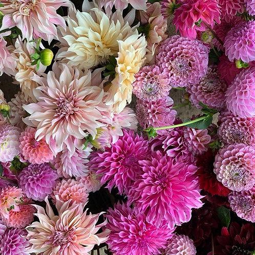 LLB locally grown, seasonal bouquets