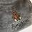 Thumbnail: TEDDY BEAR - T-SHIRT