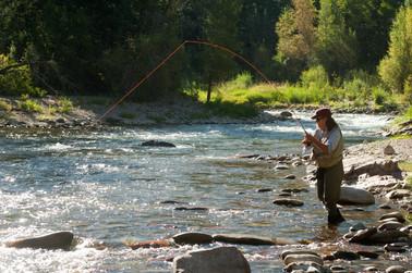 Julie fishing