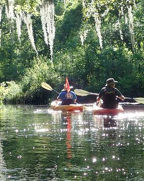 Amelia Island Kayak Tours