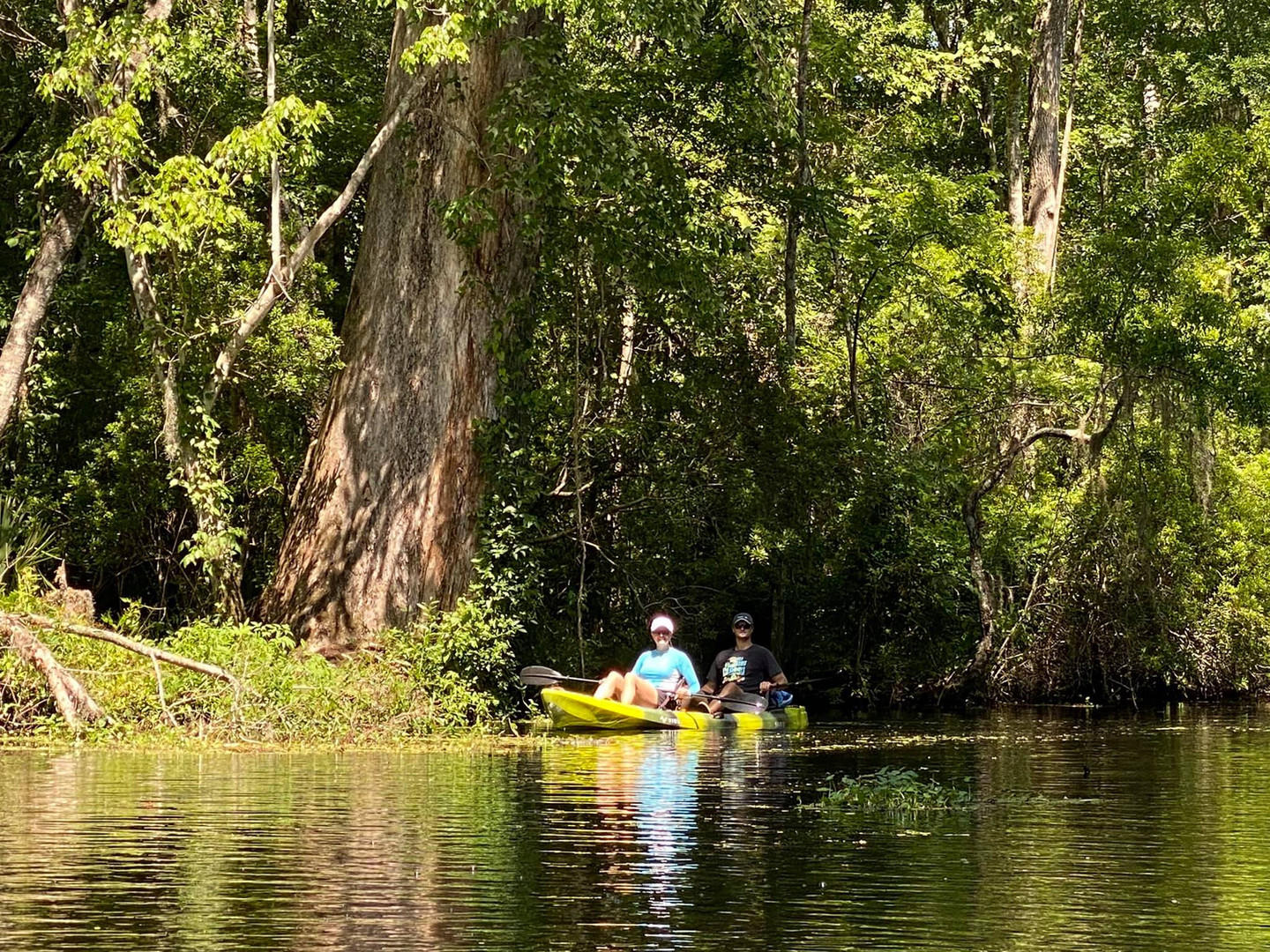 Big Cypress GUIDED Kayak Tour