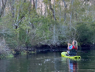 Guided wildlife kayak tour