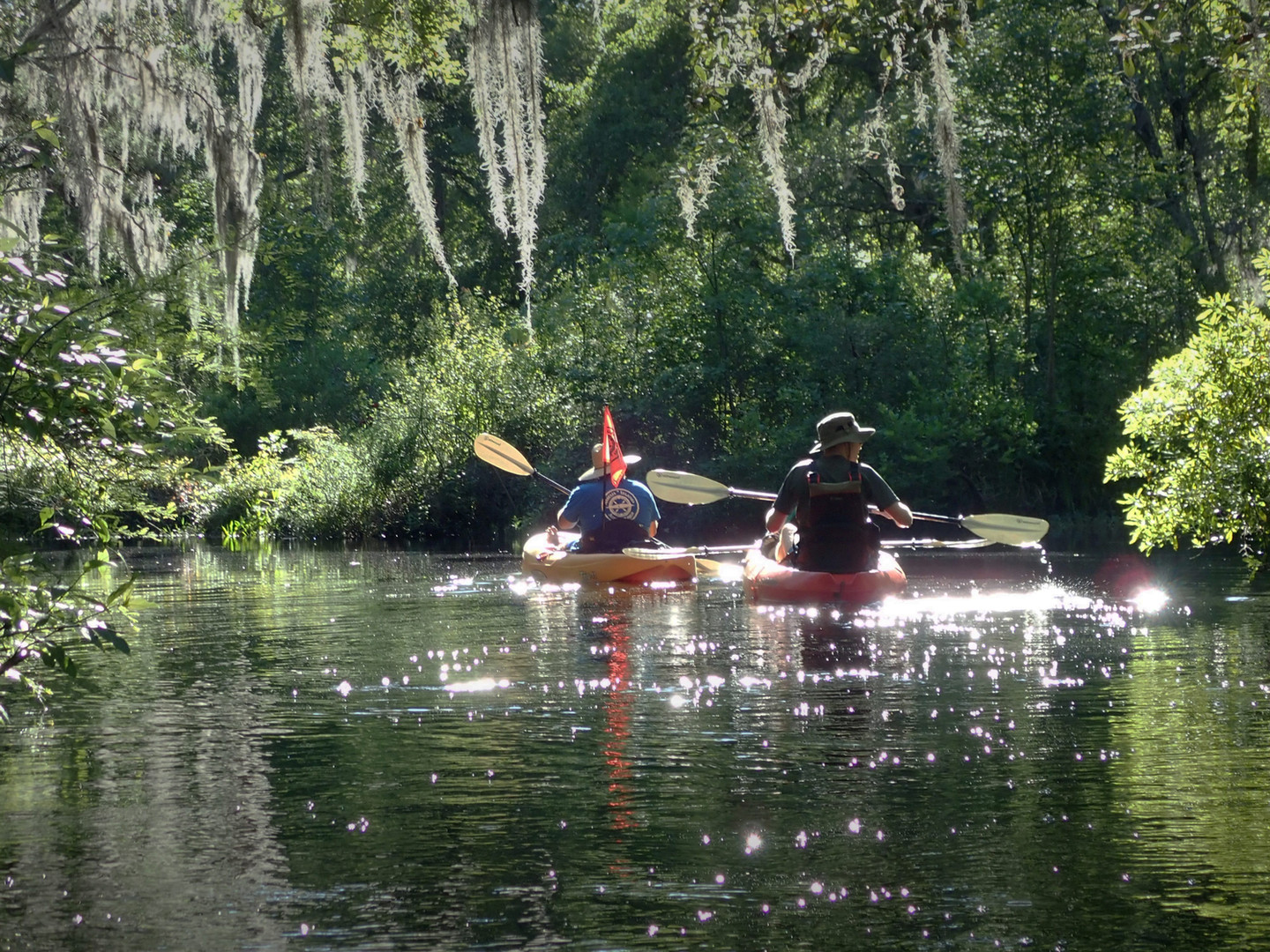 Eco Easy Guided Kayak Tour