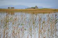 Loch Chill Donnain le Taigh Ghearraidh-B