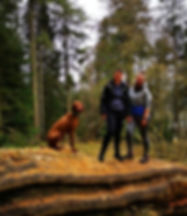 Tree climbing 🌲__#kielderwater.jpg