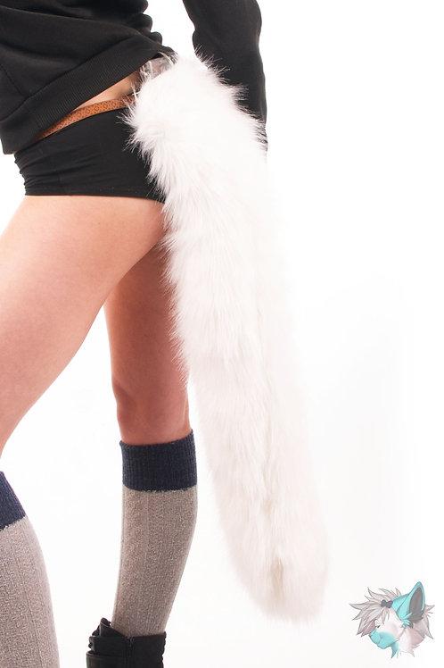 Long Cat Tail