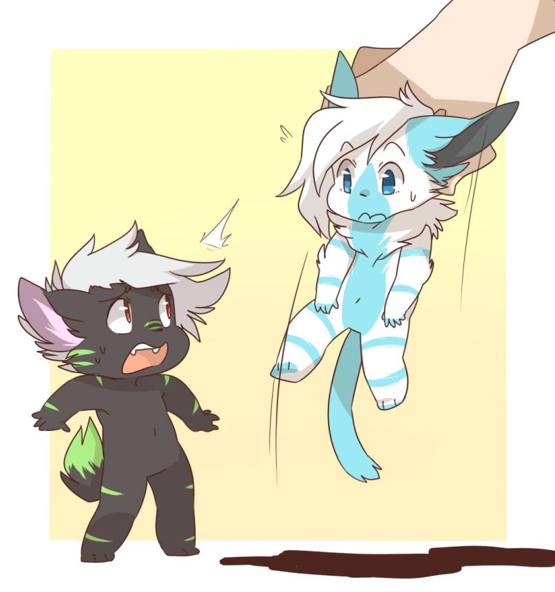 Okami & Yoka