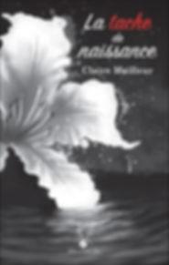 La tache de naissance - Claire meilleur - roman québécois