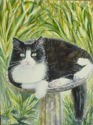 Watercolor 11