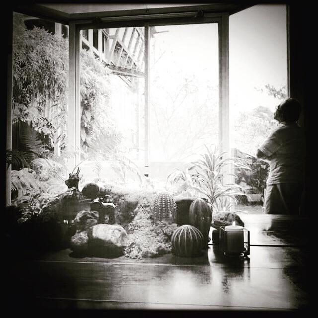 時序進入飄著綿綿細雨的冬日,憲哥看著建造中的villa#6,細心堆疊的實木與玻璃鏡面交錯的空間,是憲哥匠心獨運的設計。無法開工的下雨天,不曉得他又會蹦出什麼新點子呢?#加油憲哥💪💪🙌🏼#慶祝V