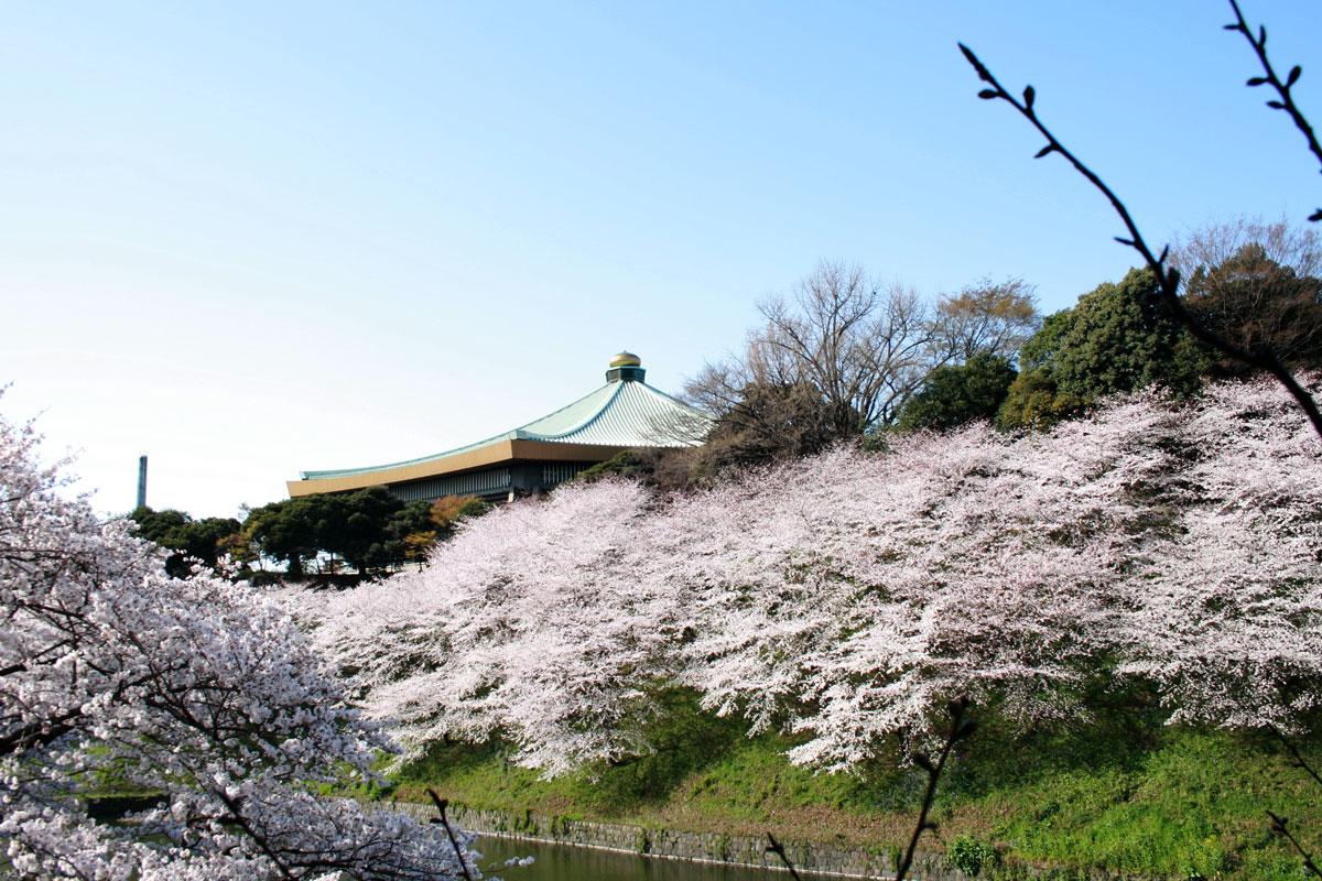日本武道館【S-05 九段下駅】