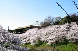 日本武道館【T-07 九段下駅】