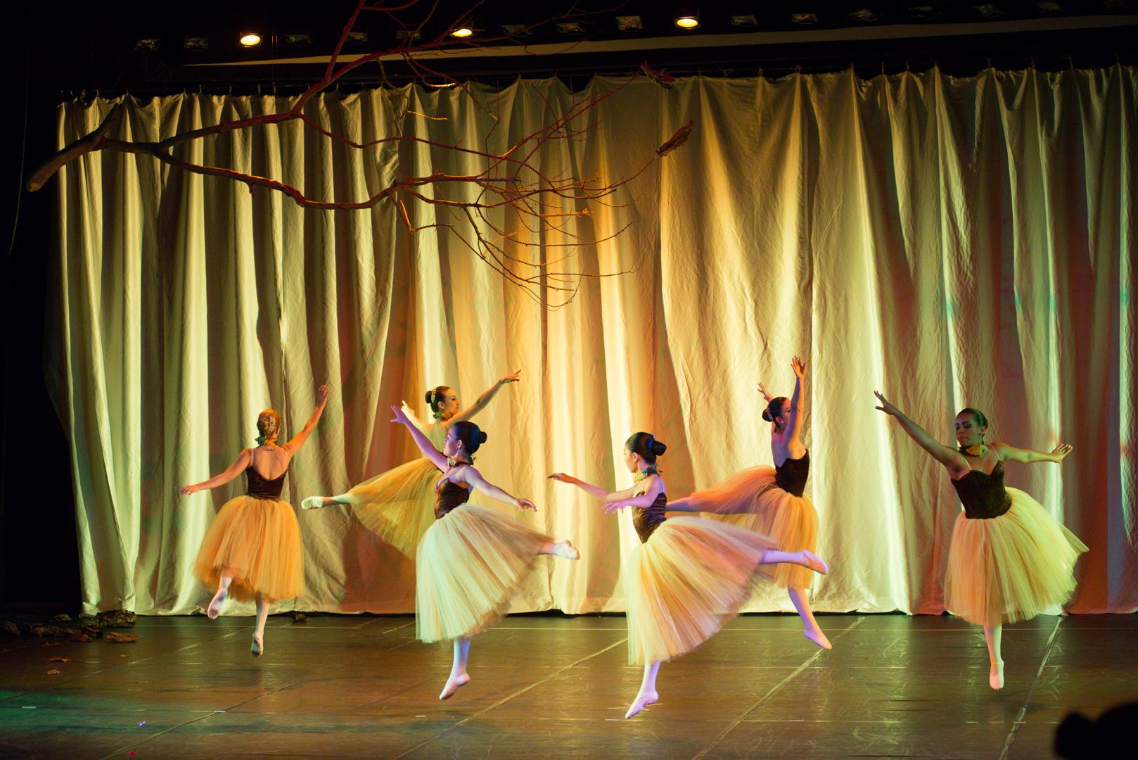 Ballet Adulto Iniciante 1 e 2/3 ano